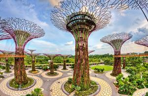 Garden Tour By The Bay Packages